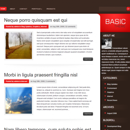 WordPress Šablona Basic