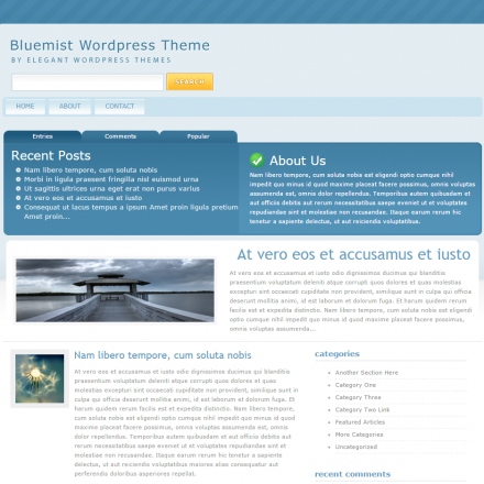 WordPress Šablona BlueMist