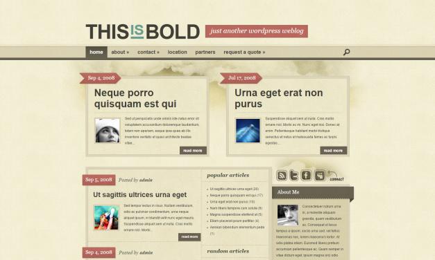 WordPress Šablona Bold