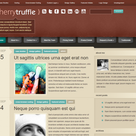 WordPress Šablona CherryTruffle