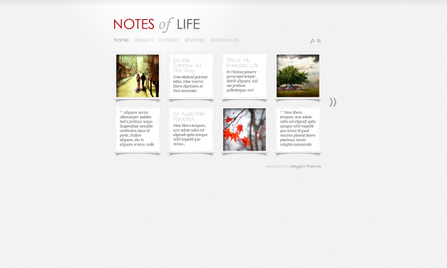 WordPress Šablona DailyNotes