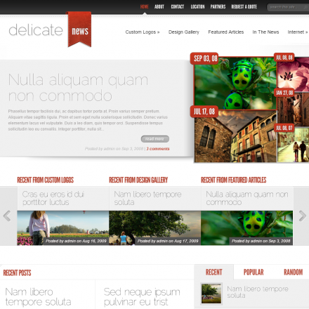 WordPress Šablona DelicateNews