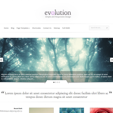WordPress Šablona Evolution