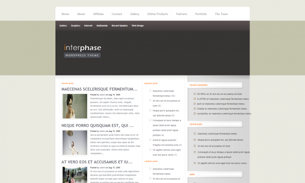 WordPress Šablona InterPhase