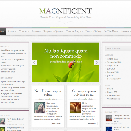 WordPress Šablona Magnificient