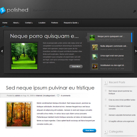WordPress Šablona Polished