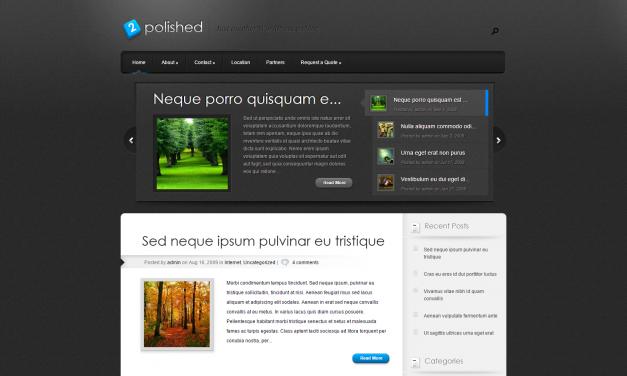 WordPress Šablona Polished