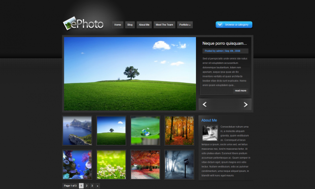 WordPress Šablona ePhoto