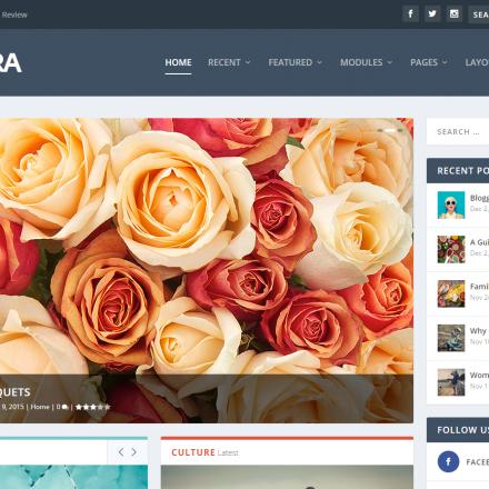 WordPress Šablona Extra